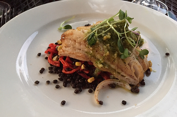 Pan roasted walleye at Barcelona. Photo: Steve Stover