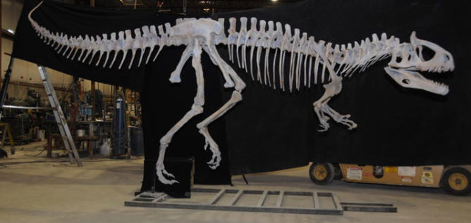 Orton Geological Museum is raising funds to get a skeleton of Cyrolophosaurus ellioti. ORTON GEOLOGICAL MUSEUM