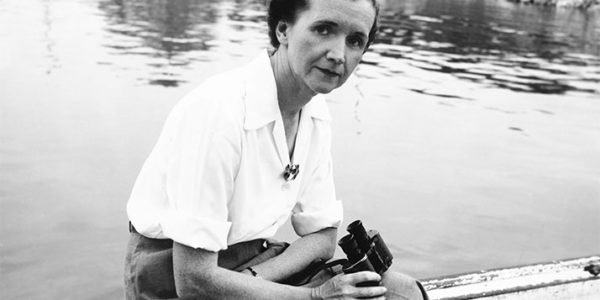 Rachel Carson poses for press photos before the release of The Sea Around Us at Woods Hole, Massachusetts in 1950.
